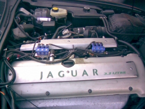 Jaguar-XJ6c