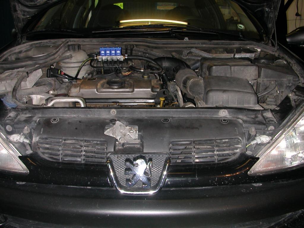 Peugeot-206-1-4a